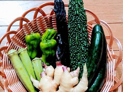【静岡県産】野菜セット 5〜7種類