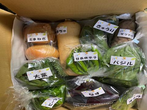 【箱いっぱいセット🎁】たくさんの種類!ちょうどいい量!お料理好きの野菜詰め合わせ☆🥗🍅🍆🍠🥦(ペットも食べられる野菜)🐶