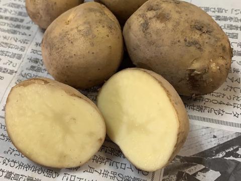 JAS認証 有機栽培 ジャガイモ食べ比べ ☆男爵☆メイクイーン☆インカのめざめ☆シャドークイーン