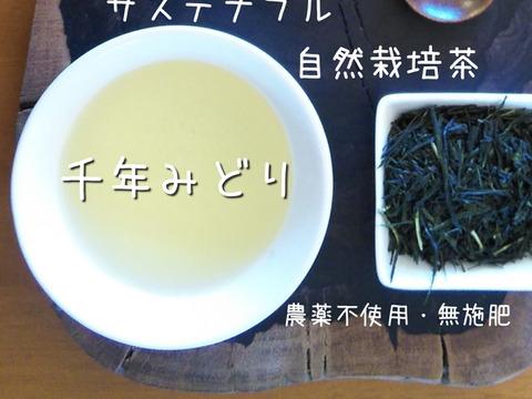サステナブル×自然栽培茶【千年みどり】増量200g入り。素朴な味のオーガニック緑茶