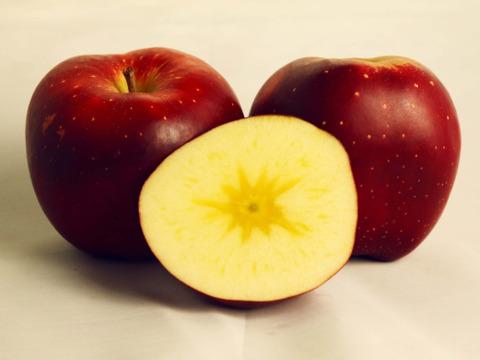 霜降り蜜の高級りんご 🍎おいらせ 🍎 4.5kg