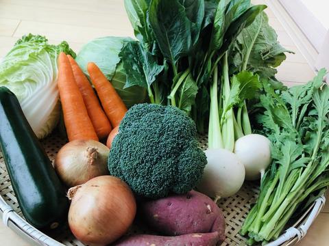 *旬の野菜* 朝採れ旬野菜のおまかせセット 【15種】