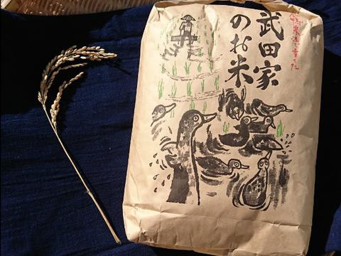 【合鴨農法】武田家のお米 銀河のしずく 白米 10kg【令和元年産】