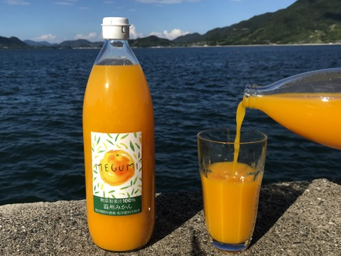 【農薬不使用】温州みかんジュース 1000ml 3本 無添加果汁100%