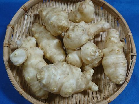 【優璃さん専用】菊芋(生)1Kg&菊芋餅(10個)