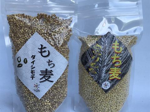 プチプチもち麦食べ比べ(キラリモチ)(ダイシモチ)精麦800g