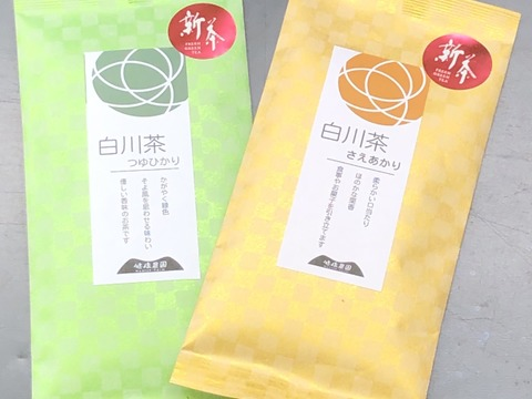 新茶の白川茶 品種茶で 飲み比べ 二種類