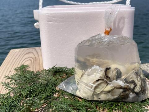 【限定むき身!】隠岐の岩牡蠣 SSサイズ 8個