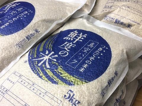 初めての方にオススメ! 2020年産『玄米』5kg 〜無農薬〜