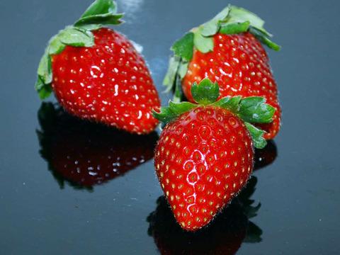 ジューシーな和歌山のオリジナルいちご ❝まりひめ❞ 4パック