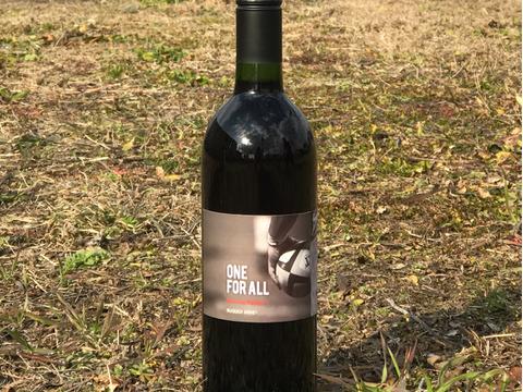 家飲みに!!「ラガーワイン」ワンフォアオール(マスカットベリーA720ml)