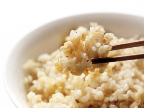 [新米]   つきあかり&こしいぶき食べ比べセット  10kg  玄米   令和三年産