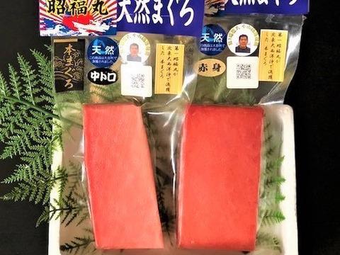 第1昭福丸が漁獲した天然本まぐろ 中トロ&赤身 【最高級アイルランド沖産】