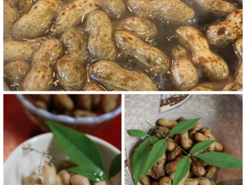 生茹で落花生を食べたことがありますか?(1kg)