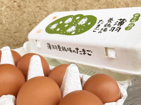 【納豆菌の仲間、『枯草菌』で育てた鶏の卵】陶芸の里、益子でうまれた赤たまご 30個