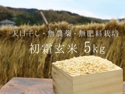 《新米令和元年産、予約》初霜玄米5kg【無農薬・無肥料 生命力溢れる】