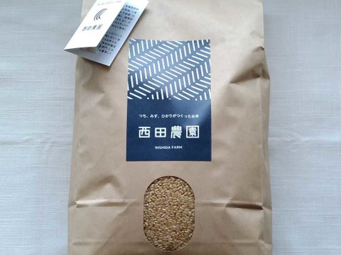 令和2年産・特別栽培米コシヒカリ 玄米10kg 低農薬(80%以上削減)