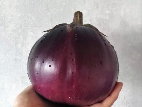 秋ナス!【有機JAS認証】湯浅なす 3玉 南アルプスの有機野菜