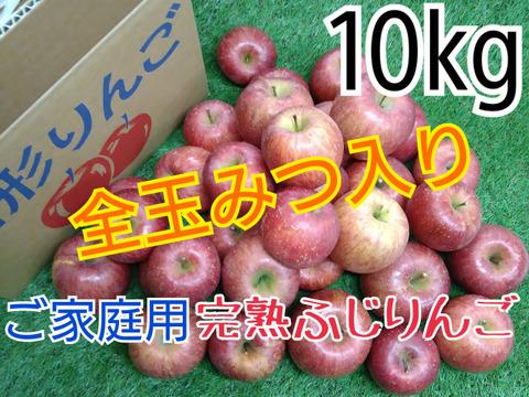 全玉みつ入り◆ご家庭用◆完熟ふじりんご約10kg