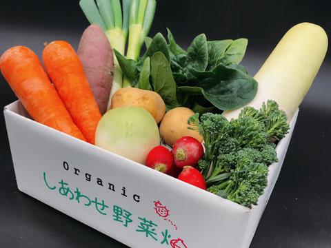 【抗酸化力に注目】オーガニック・しあわせ野菜セット・小