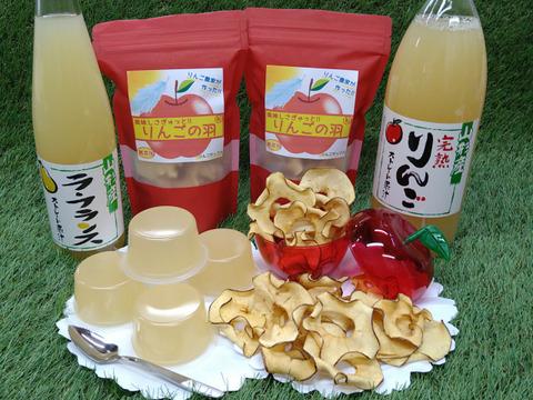 【夏ギフト】美味しさギュッと果汁の恵み*B