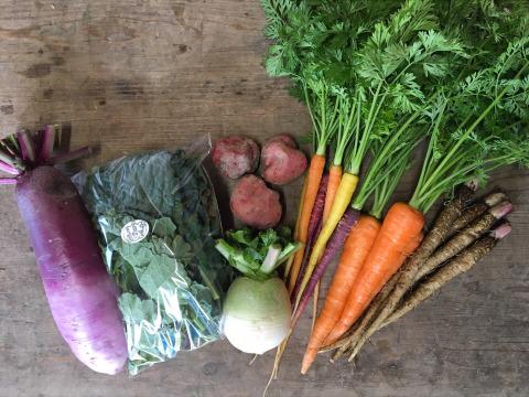 【中里自然農園】お試しお野菜ミニBOX(5ー6品目)/無農薬