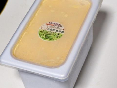 【光電子水利用】光自然栽培ポンカンの栄養まるごと本格イタリアンジェラート4L