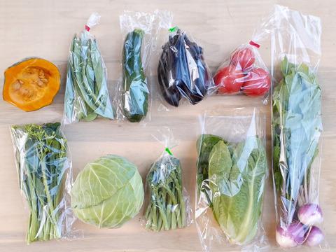 『子育て農家の野菜セット』 Lサイズ 10~11品目