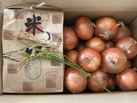 【ギフトにおすすめ】淡路島の玉ねぎ農家が作った新米キヌヒカリ3kgと玉ねぎ5kgのセット