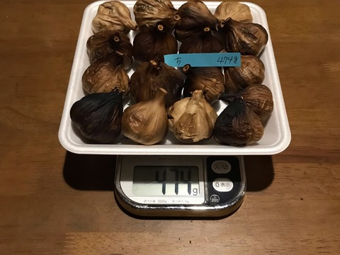 ち  自然栽培 黒にんにく サイズいろいろ たっぷり17個 良い仕上がりです 人気の黒ニンニクです 食べやすくて美味しい