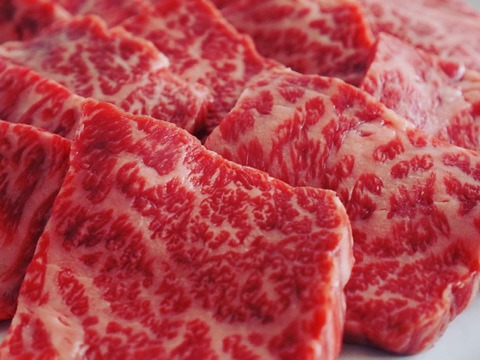 【お家でごちそう】食べ比べ!希少部位焼肉(450g×2パック/4-5人前)