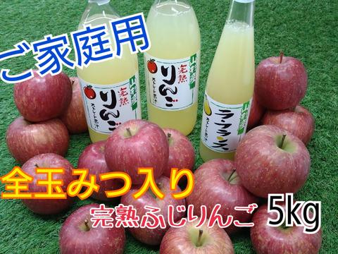 全玉みつ入り◆ご家庭用◆完熟ふじりんご約5kg&ジュース3本セット