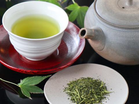 【農家普段飲み緑茶】人気商品 3袋セット 特選 深蒸し 緑茶 100g