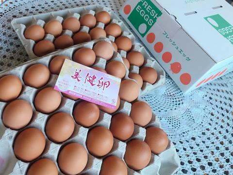 ギフトにおすすめ!鶏卵50個(化粧箱入)