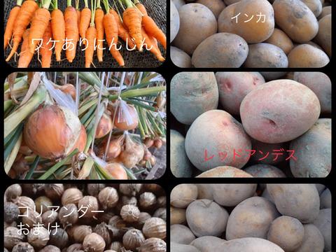 ※訳あり価格※カレー大好き百姓のじゃが・たま・にんじん+季節の野菜2品