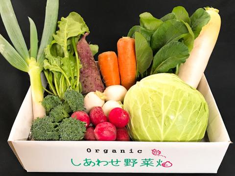 【規格外野菜利用】 3月のオーガニック・シェフセットS
