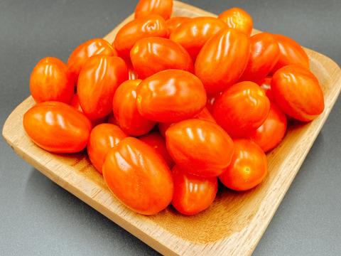 【期間限定】絶品!!おやつ感覚で食べられるスナックミニトマト(2kg)