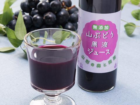 山形県産 山菜ときのこの森から「山ぶどう原液100%ジュース 500mlx1本」ポリフェノールたっぷりの甘く美味しい健康飲料です♪♪