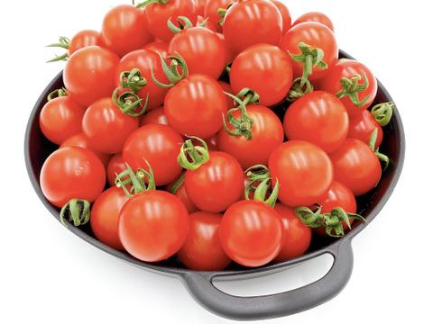 パリッと新鮮!真っ赤で美味しい完熟ミニトマト(2kg)