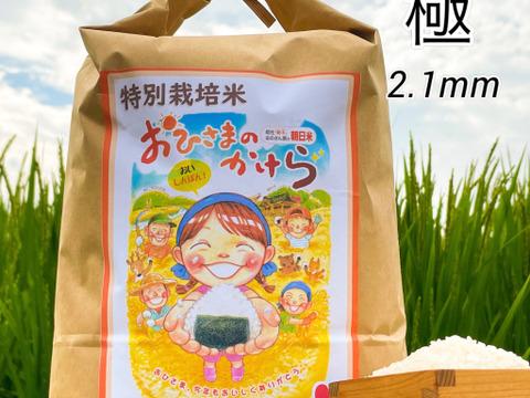 【9月末まで200円OFF】【限定10】【極-プレミアム米 2.1mm】「特別栽培米」おひさまのかけら(朝日米)玄米10kg