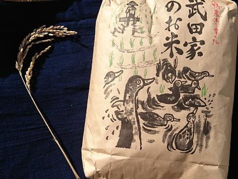 お得な組み合わせ自由セット【合鴨農法】武田家のお米 10 kg【令和2年産新米】