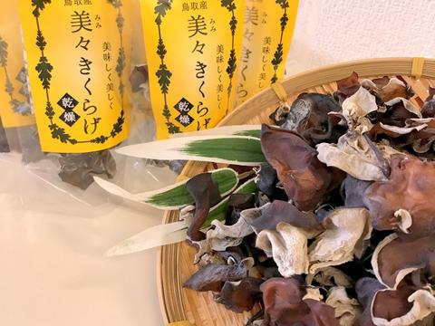 食べたい時にサッと水戻し「鳥取県産」乾燥キクラゲ