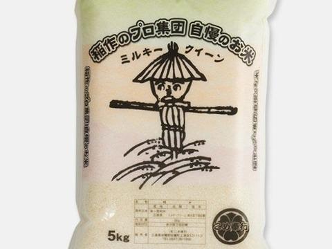新米!!【こめ奉行一番人気】ミルキークイーン(5kg)♪モチモチであまーいお米
