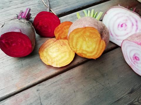 八ケ岳高原野菜 真っ赤なビーツ、ゴールド、渦巻き入り3種( 4kg)