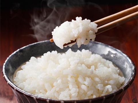 [新米]   コシヒカリ  5kg  無洗米  令和三年産