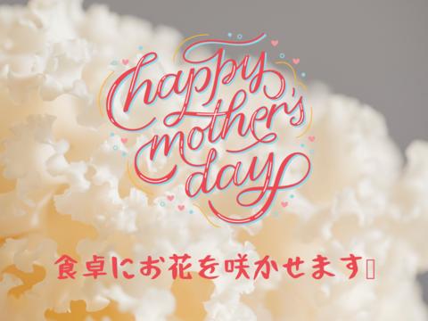 【母の日におすすめ】食べられる白いカーネーション?幻のキノコ、ホホホタケ(4パック)