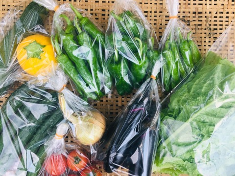 鴨さんの旬を届ける「大盛り」野菜セット10種類程度