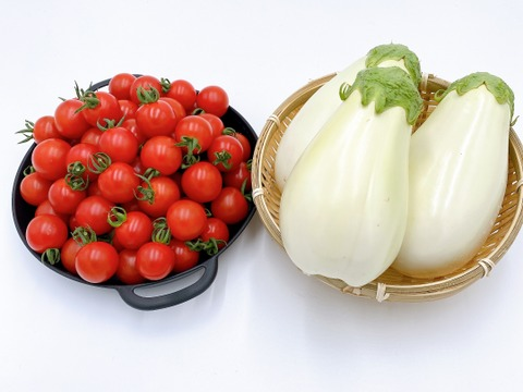 【季節限定】ふわとろ白ナス(10本)と完熟ミニトマト(詰め合わせ2kg)のセット