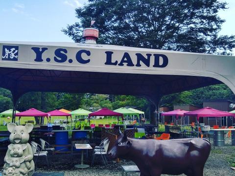 【YSC-LAND】 バーベキューセット1kg