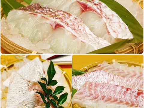 【真鯛の美味しい詰め合わせ】天草産 「真鯛お刺身用のサク&切身&カマ」セット